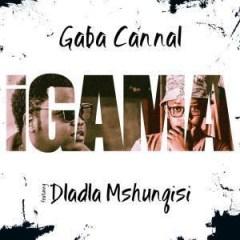 Gaba Cannal - Igama Ft. Dladla Mshunqisi